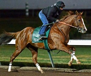 California Chrome Works Easy for Pegasus