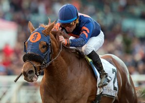 Mind Your Biscuits Scores Grade I in Malibu