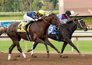 Constellation Digs in to Win La Brea