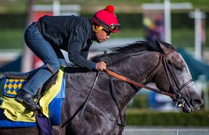 Midnight Storm Challenges Arrogate in San Pasqual
