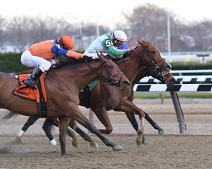 Highway Star Wins Go for Wand by a Nose