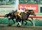 A Look Back at A.P. Indy's Hollywood Futurity