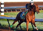 Dortmund Drills for Sherman at Los Al