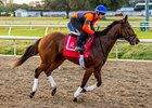 Valadorna Set for Seasonal Bow at Fair Grounds