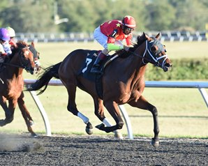 Master Plan Impresses in OBS Championship Stakes