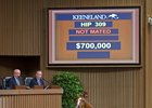 Delightful Joy Brings $700,000 at Keeneland