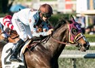 Prize Exhibit Seeks Return to Form in Wilshire Stakes