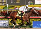 Preakness May be Goal for Cal Nation