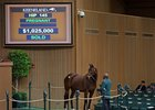 Siren Serenade Lights Up Keeneland Bid Board
