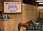 Dixie Union Mare Tops Keeneland Sale Session