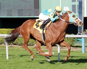 Bigger Picture Tops Maker Trifecta in Connally Turf Cup