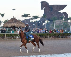 Big Race, Then Transition for California Chrome