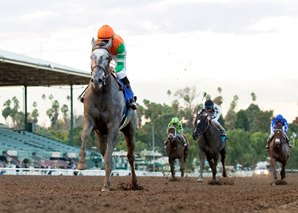 Unique Bella Romps in Santa Ynez
