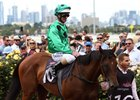 Oscietra Places Third in Flemington Debut