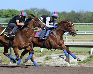 Irish War Cry Breezes at Fair Hill
