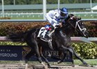 Third Day Wins Overnight Stakes at Gulfstream Park