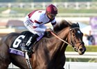 Royal Delta Dies Due to Foaling Complications