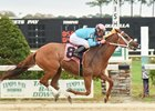 Experience Helps Allen Compete at Tampa Bay Downs