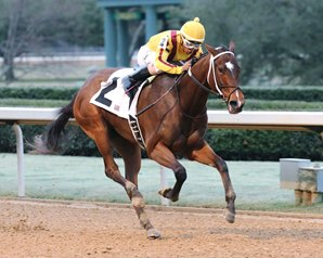 Terra Promessa Puts Oaklawn Form on Line in Azeri