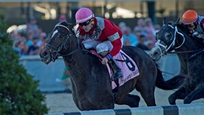 McCraken Could Try Tampa Bay Derby Next