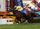 Werther Heads Moore's Group 1 Hong Kong Quintet