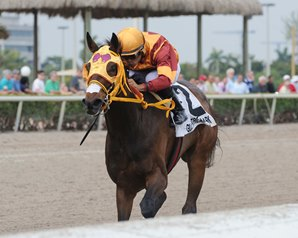 Curlin's Approval Favored in Relocated Matron Stakes