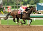 Wild At Heart Makes Short Work of Buena Vista