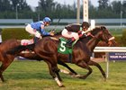Royal Delta Half Brother Scores on Gulfstream Turf