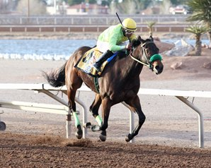 Conquest Runners Continue to Win for New Owners