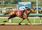 Denman's Call Heads Churchill Downs Stakes Entries