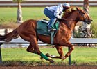 Dortmund Works for First Turf Start in Kilroe Mile