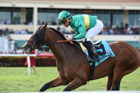 Ticonderoga Powerful In Palm Beach Bloodhorse Com