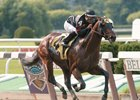 Ghostzapper's Tom Fool Romp