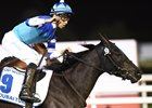 Filly Vivlos Rallies to Beat Boys in Dubai Turf