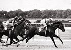 Ruffian: A Photographic Tribute