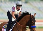 Hope Floats for Hoppertunity in Dubai World Cup