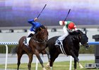 Thunder Snow Gets Up in UAE Derby
