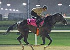 UAE Derby Features Japan's Kentucky Derby Qualifier