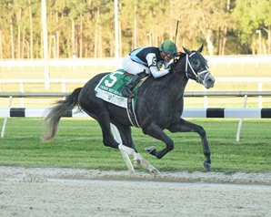 Tapwrit Shows His Class in Tampa Bay Derby