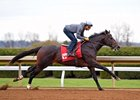 McCraken Back on Track, Settled in at Keeneland