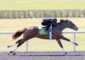 More Than Ready Colt Sizzles in OBS Work