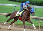 Sano Star Gunnevera Goes Easy Five Furlongs