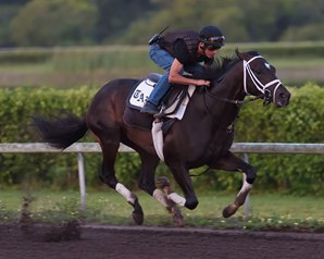Always Dreaming Pleases Pletcher in Florida Move