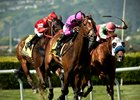 Alert Bay Repeats in San Francisco Mile