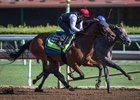 Abel Tasman Gears Up for Kentucky Oaks Run