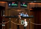 High-Profile Owners Team Up to Buy Expensive Colt