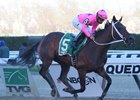 Miss Sky Warrior Extends Win Streak in Gazelle