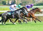 Hydrangea Takes One Thousand Guineas Trial