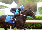 Cloud Computing to Bypass KY Derby, Point for Preakness