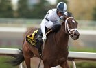 Addictive Aims to Regroup in Selene